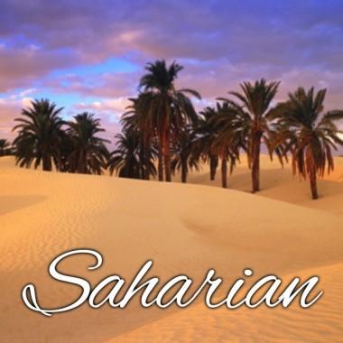 Alfaliquid Tabac Saharian